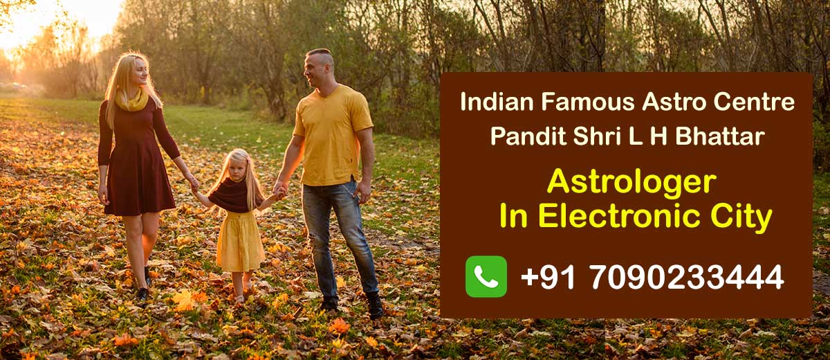 Astrologer in Electronic City