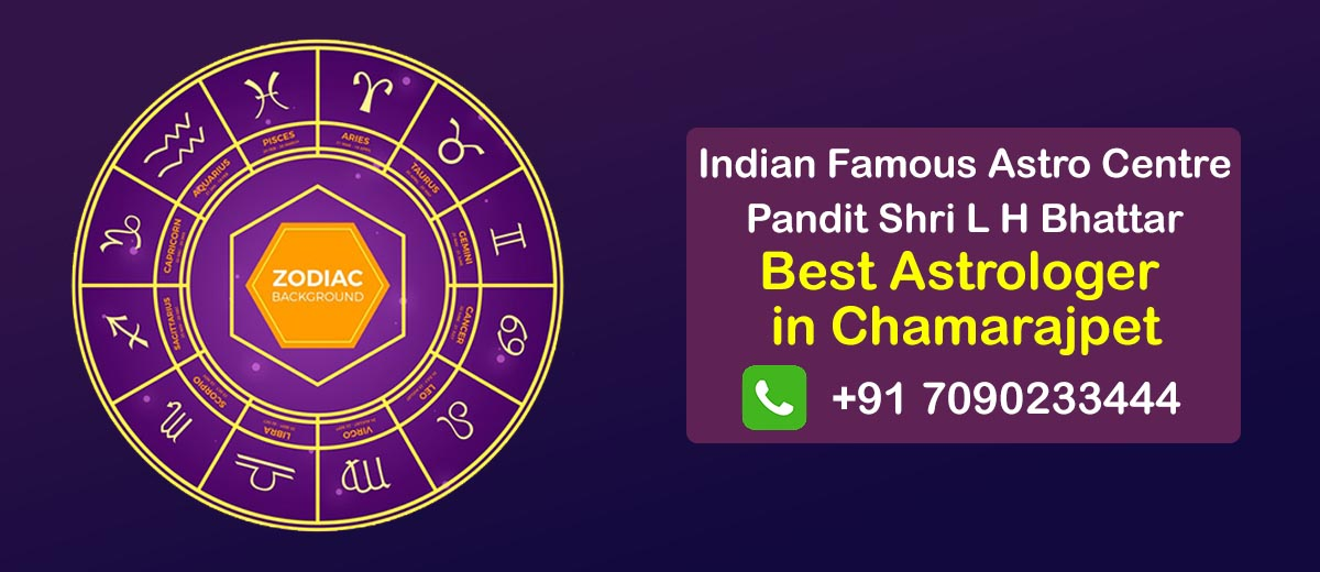 Best Astrologer in Chamarajpet
