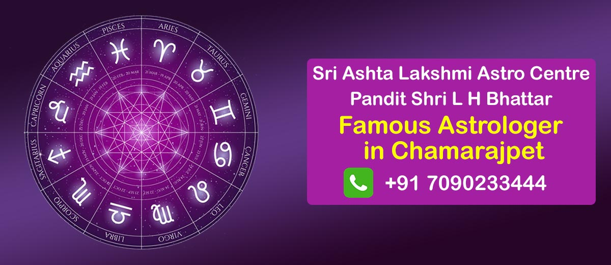 Famous Astrologer in Chamarajpet