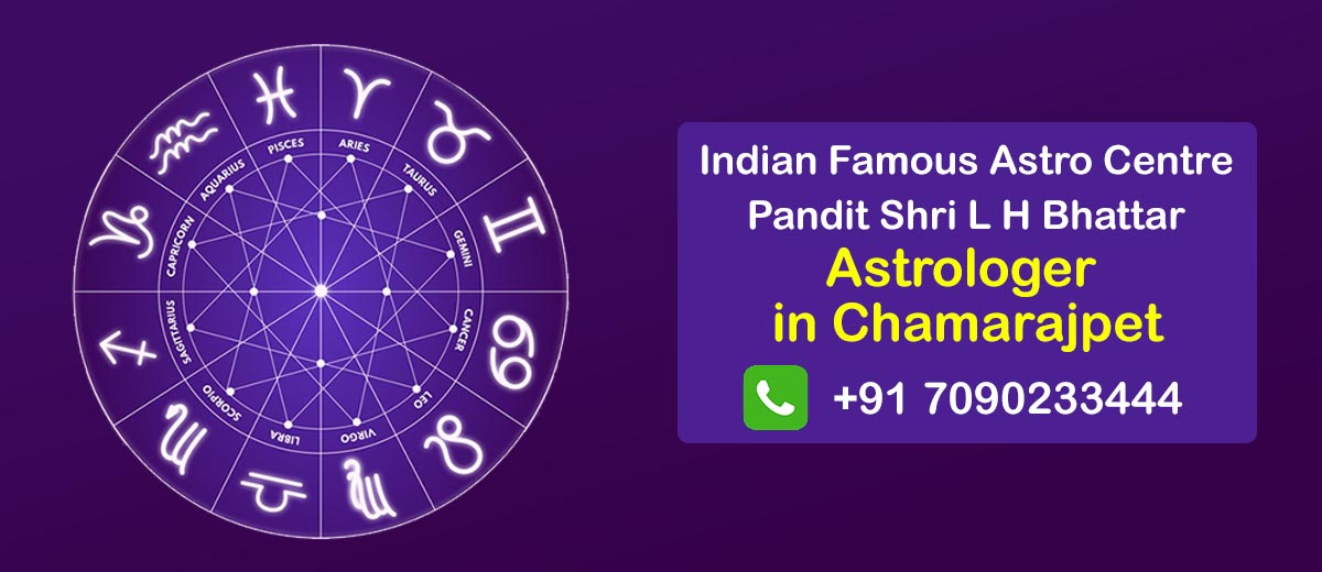 Astrologer in Chamarajpet